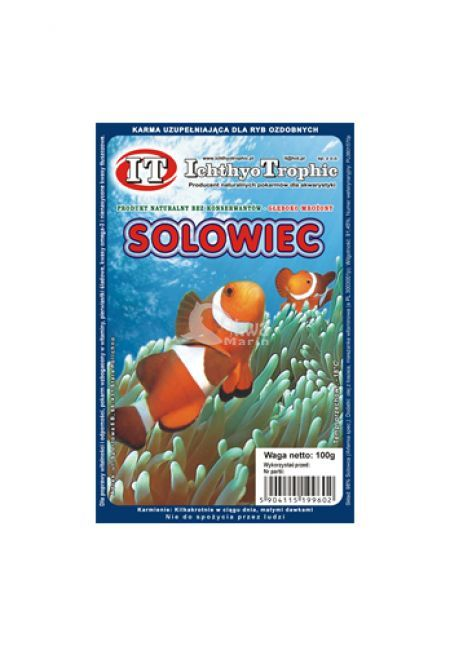 Solowiec